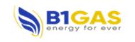 b1-gas